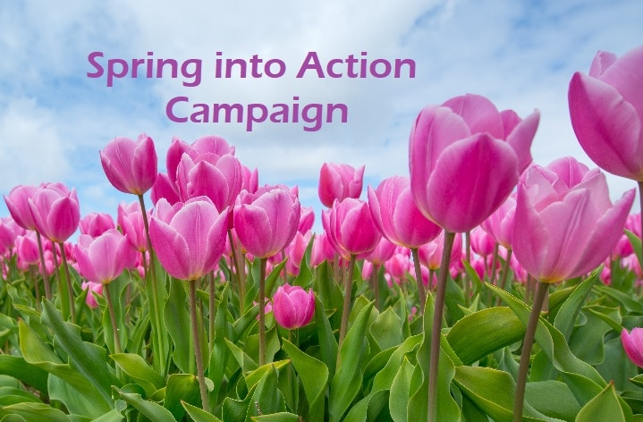 SpringintoAction6